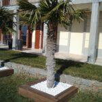 Lesena terasa, palme - Portorož